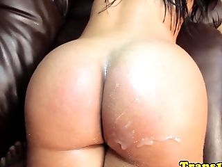 Latina Tgirl Posing Before Hopping On Dick