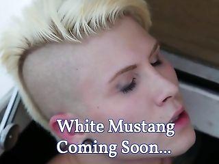 Milky Mustang - Trailer