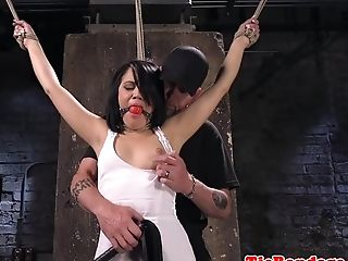 Restrain Bondage Loving Honey Fingerblasted By Male Domination