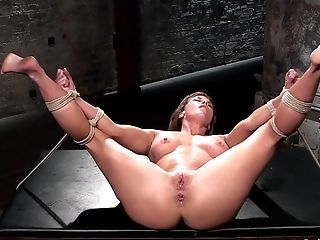 sorry, that interrupt free latina houswife pussy pics apologise, but does not